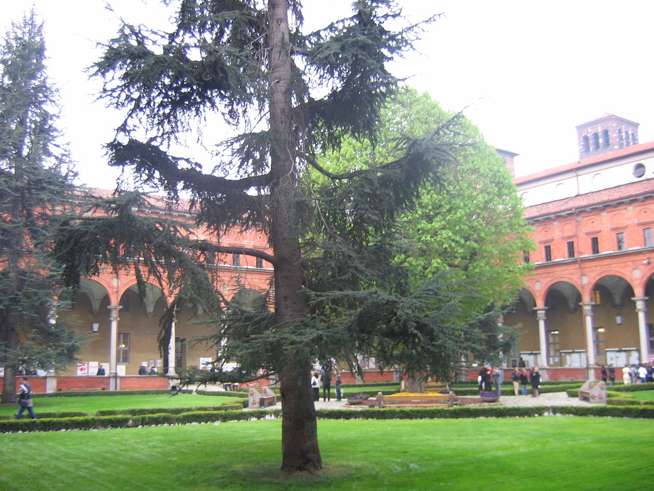 One of the inner yards (a former cloister) of Università Cattolica in Milan.