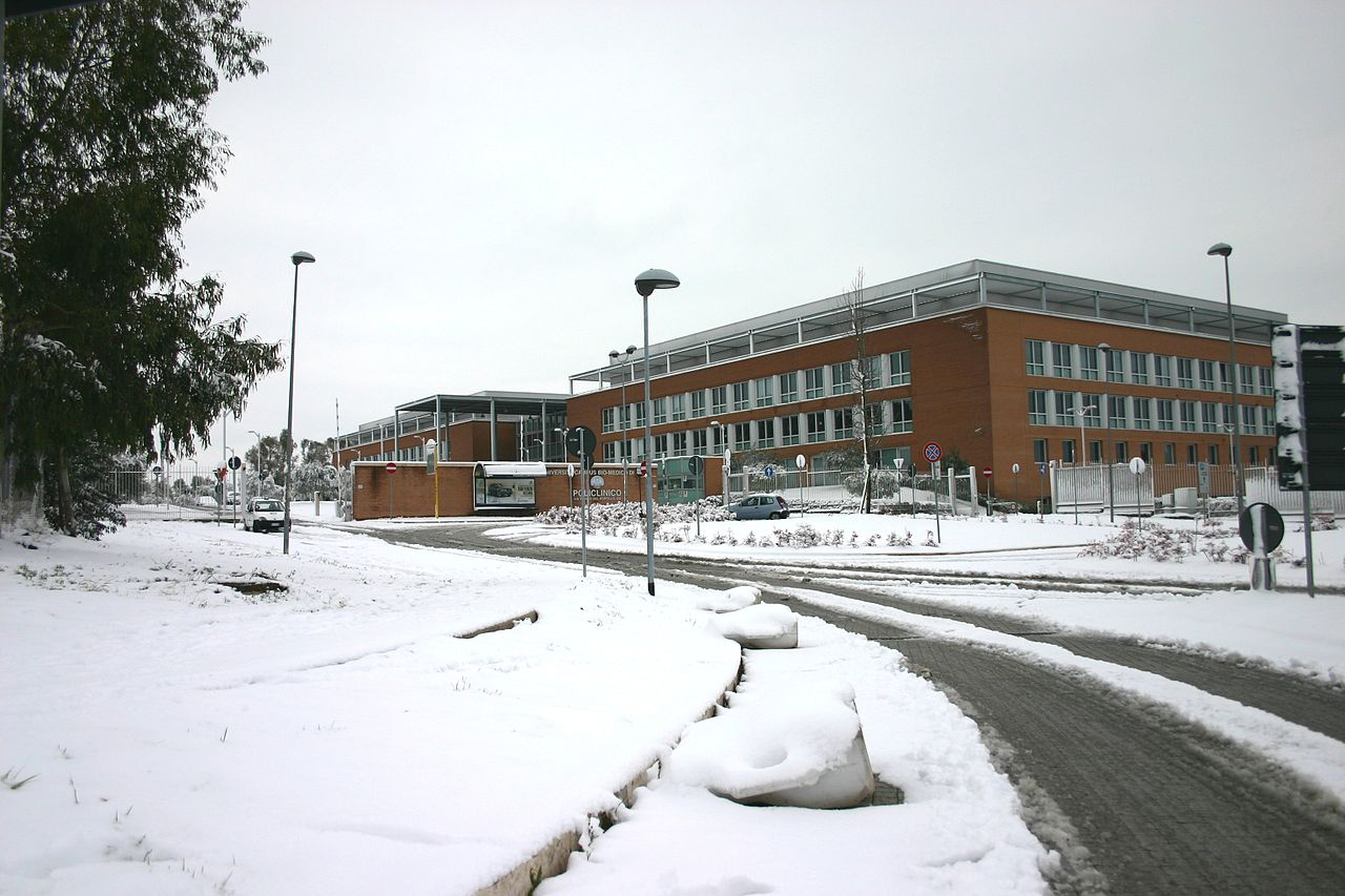 Campus Bio-Medico University, Rome, under the snow, february 2012 - 2